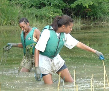 Anita C. Leight Estuary Center - Fun Maryland Field Trips