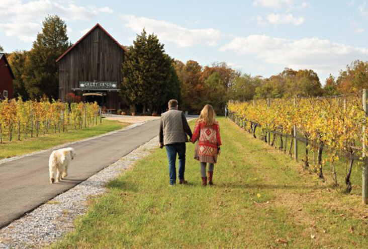 Chesapeake Wine Trail: day trips in Maryland